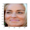 Face Detected From a Photograph of Sharon Stone Using an MTCNN Model