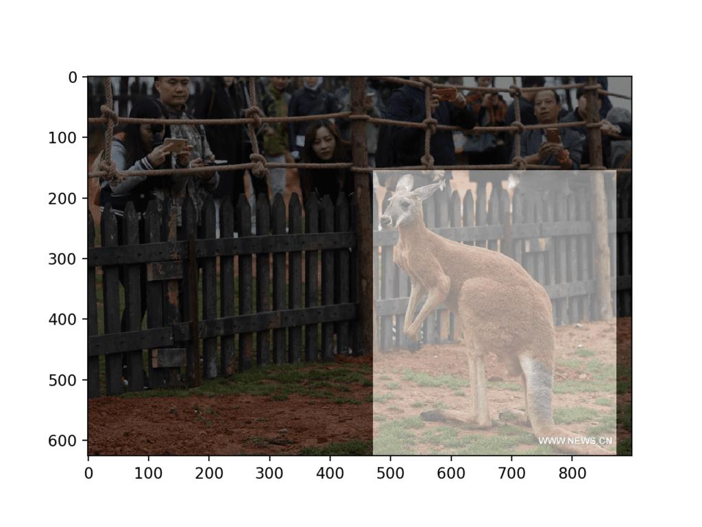 Photograph of Kangaroo With Object Detection Mask Overlaid