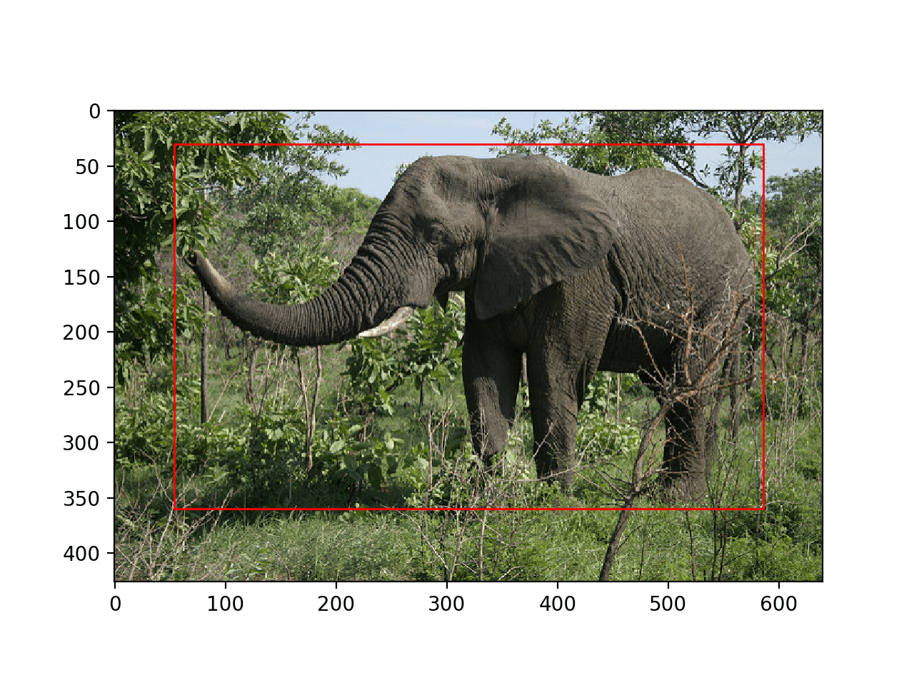 Photograph of an Elephant With All Objects Localized With a Bounding Box