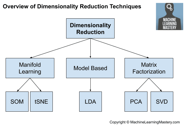 Overview of Dimensionality Reduction Techniques
